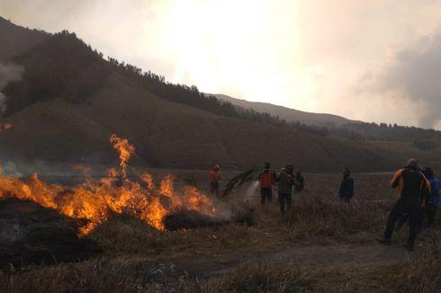 Pemulihan Lahan Terbakar di Kawasan Bromo Akan Dilakukan secara Alami