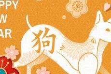 Pemilik Shio Macan, Kuda dan Anjing Paling Hoki di 2018!