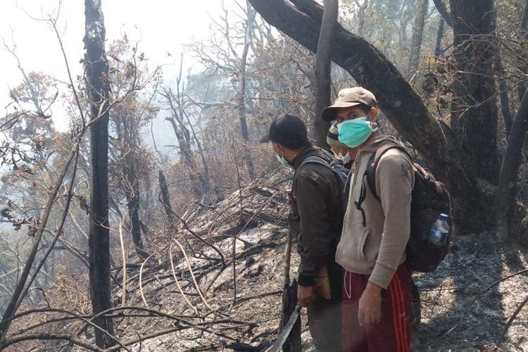 Bekas area kebakaran di lereng Gunung Slamet, perbatasan Kabupaten Brebes dan Banyumas, Jawa Tengah, Jumat (20/9/2019).