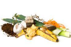 4 Langkah Buat Kompos dari Sampah Organik, Pakai Makanan Basi di Rumah