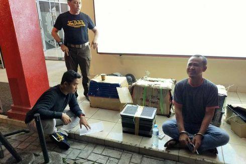 Diselundupkan dari Malaysia, 4 Anak Singa, 1 Leopard, dan 58 Kura-kura Dimasukkan dalam Kotak
