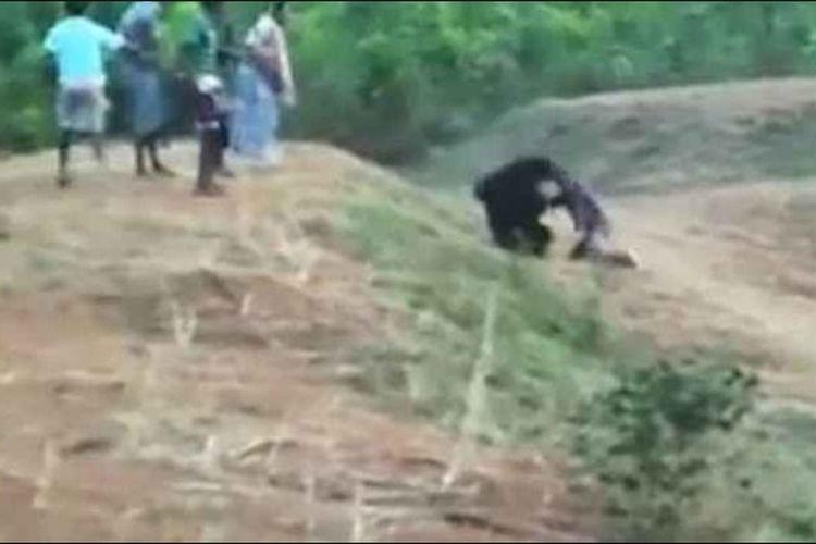 Seekor beruang tampak mencengkeram dan menyerang seorang pria disaksikan sejumlah warga.