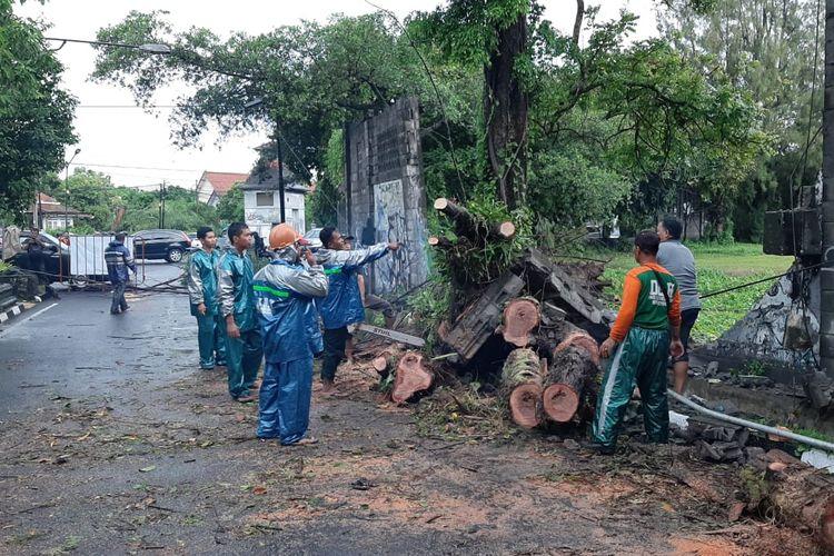 Sebuah pohon di Jalan F M Noto Kota Yogyakarta roboh akibat hujan deras disertai angin kencang. Pohon menimpa satu mobil yang melintas. Beruntung tidak ada korban jiwa dalam kejadian ini. Saat ini Jalan F M Noto ditutup sementara untuk pemindahan pohon, Jumat (14/2/2020).
