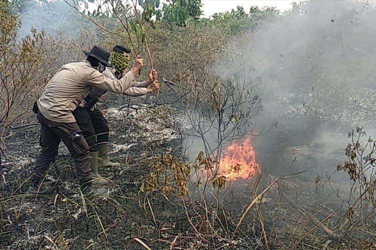Personel Polres Pelalawan memadamkan api dengan menggunakan kayu karena tidak ada air pada kebakaran di kawasan TNTN di Kabupaten Pelalawan, Riau, Kamis (8/8/2019). Dok. Polres Pelalawan