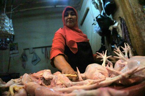 Kemendag Serap Daging Ayam Ras Peternak untuk Stabilkan Harga