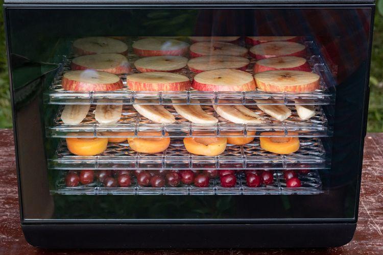 Ilustrasi dehidrator makanan untuk mengeringkan bahan makanan.