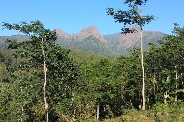 Inilah Gunung Piramid di Pegunungan Argopuro di Kabupaten Bondowoso, Jawa Timur, lokasi hilangnya Thoriq Rizki Maulidan, pendaki remaja asal Desa Sukowiryo Kecamatan Bondowoso.