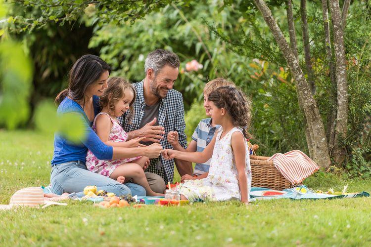Ilustrasi piknik bersama keluarga.