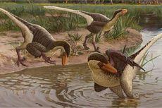 Peneliti Temukan Fosil Dinosaurus Berbulu yang Paling Lama Bertahan di Bumi