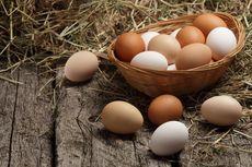 3 Alasan yang Membuat Telur Cocok untuk Menu Diet