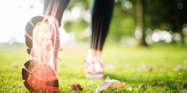 Hilangnya massa tulang penderita osteoporosis terjadi secara berkelanjutan dan dalam jangka panjang.