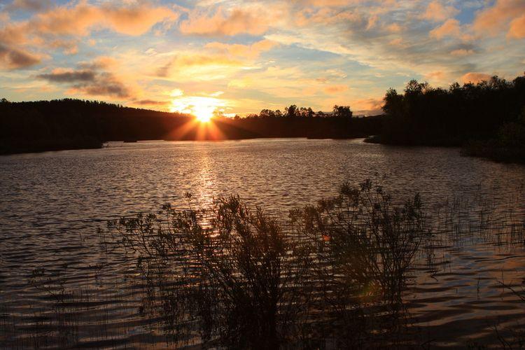 ilustrasi Midnight Sun di Finlandia