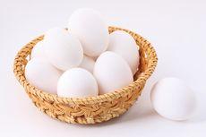 Polisi Gagalkan Penyelundupan Ribuan Telur Penyu dari Pulau Tambelan ke Pontianak