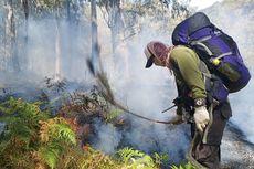 Hutan Gunung Arjuno Kembali Terbakar, yang Kedua Selama Kemarau 2019