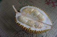 Desa Ujungberung, Pusat Durian Perwira Sinapeul khas Majalengka