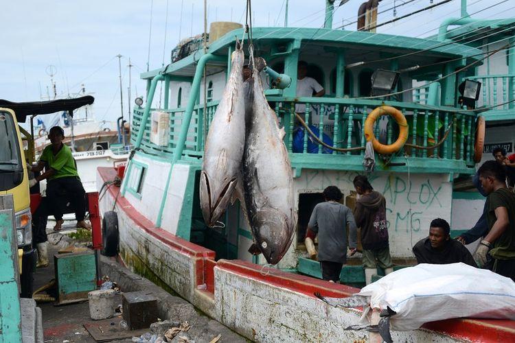 Nelayan menurunkan ikan tuna hasil tangkapan mereka di pelabuhan Benoa, Bali.