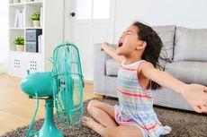 4 Jenis Kipas Angin Terbaik untuk Tetap Menyejukkan di Cuaca Panas