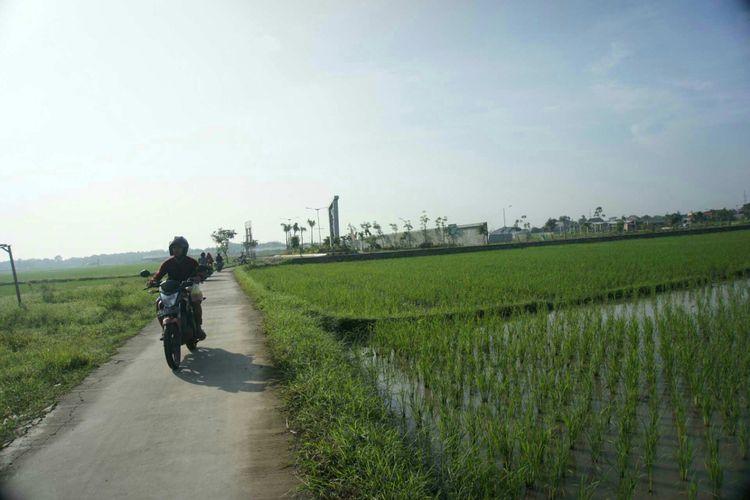 Seorang pengendara sepeda motor tengah melintas di areal persawahan di Desa Kondangjaya, Kecamatan Karawang Timur, Kabupaten Karawang. Sejumlah petani di Karawang menilai pendistribusian Kartu Tani tidak transparan.