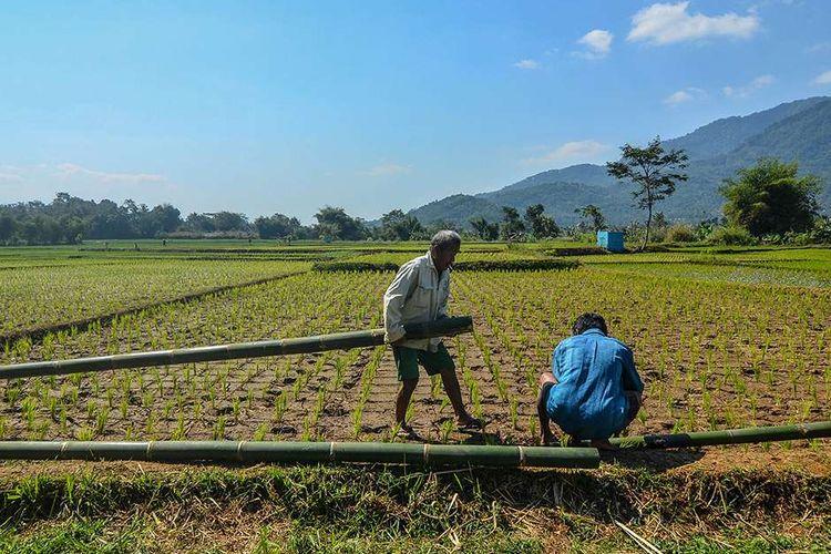 Kementan Aktif Lawan Upaya Alih Fungsi Lahan Pertanian