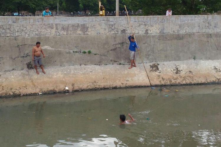 Seorang warga turun ke dalam air di Waduk Setiabudi untuk menjaring ikan, Rabu (13/12/2017).