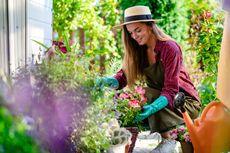 Ingin Berkebun? Ini Daftar Peralatan yang Perlu Dimiliki