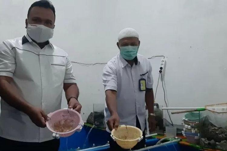 Polisi di Jambi, Rabu, menunjukkan puluhan ribu lobster yang akan diselundupkan ke Malaysia melalui pelabuhan di Kabupaten Tanjab Timur. ANTARA/Nanang Mairiadi