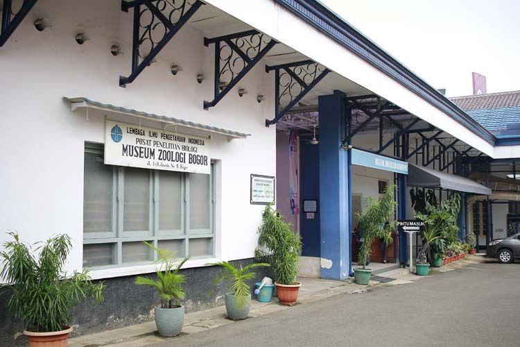 Museum Zoologi di Kebun Raya Bogor.