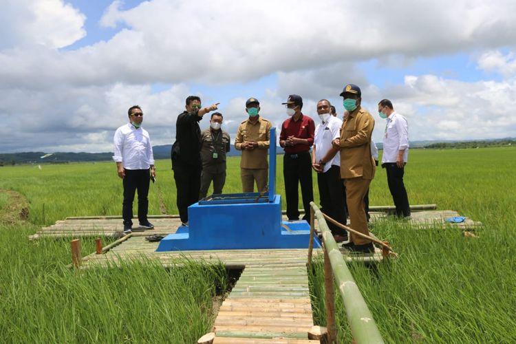 Menteri Pertanian Syahrul Yasin Limpo saat meninjau areal zona 4 food estate Sumba Tengah, Nusa Tenggara Timur yang berlokasi di Desa Makatakeri pada Senin (15/2/2021).