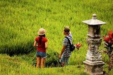 Imbas RKUHP, Turis Australia Beralih dari Bali ke Thailand