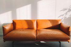 Cara Membersihkan Sofa Kulit dengan Benar agar Tidak Rusak