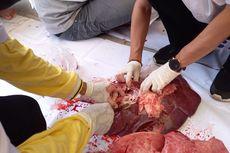 22 Kg Organ Hewan Kurban Tak Layak Konsumsi di Jakarta Pusat Dimusnahkan