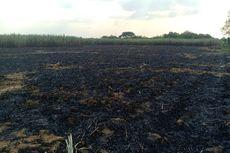 Seorang Petani Tewas Terbakar di Lahan Tebu