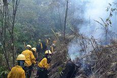 Kisah Pemadam Kebakaran di Kaltim, Kehabisan Makanan, Tersesat hingga Pingsan di Hutan