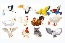 Adaptasi Morfologi Pada Hewan