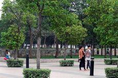Ini Kota-kota Sehat Tiongkok untuk Investasi Properti