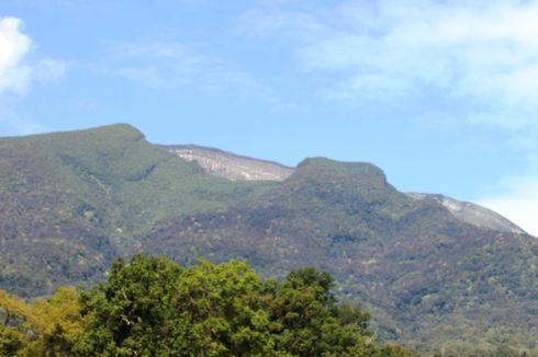 Jalur Pendakian Gunung Gede Pangrango Dibuka, Tenda Tak Boleh Diisi Penuh