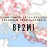 Tugas dan Fungsi Badan Pelindungan Pekerja Migran Indonesia (BP2MI)