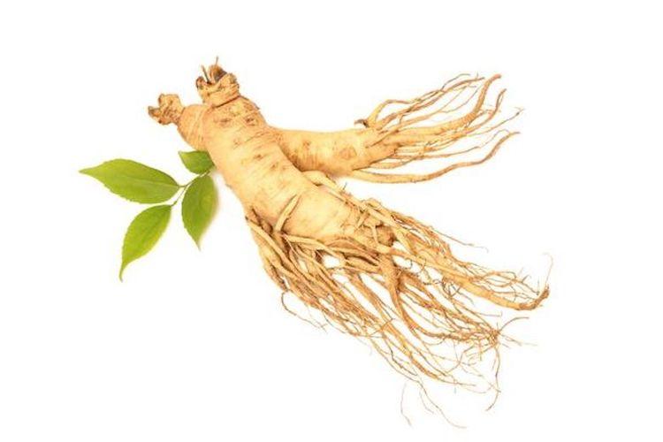 Ginseng sebagai salah satu contoh obat alami