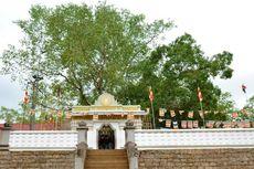 Gajah Liar Bunuh 2 Orang di Dekat Situs Suci Buddha di Sri Lanka