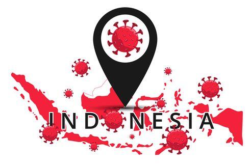 UPDATE Covid-19 di Sulteng, Sultra, Maluku, Malut, Papua, dan Papua Barat 1 Juli 2020
