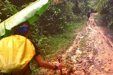 Surga Tanaman Obat di Jantung Borneo