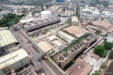 Petrokimia Gresik Gandeng PLN untuk Penuhi Pasokan Listrik 11,4 MW