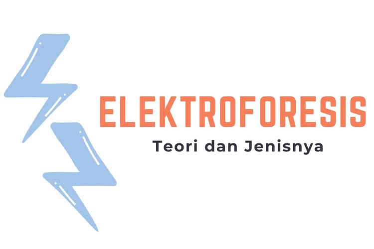 Ilustrasi Elektroforesis