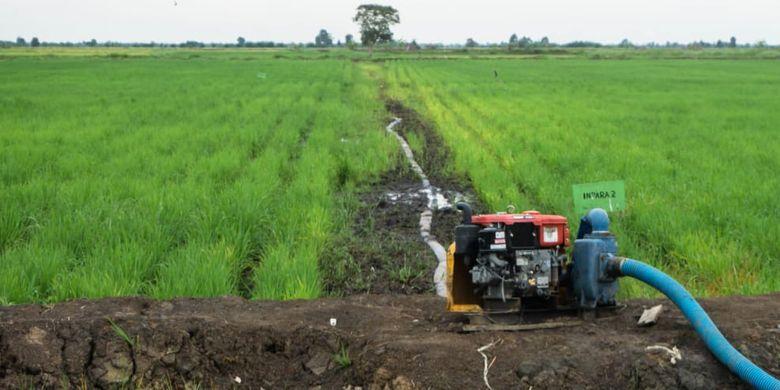 Kementerian Pertanian (Kementan) mengantisipasi musim kemarau melalui pembangunan infrastruktur air.