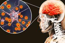 3 Patogen Penyebab Meningtis yang Harus Kita Waspadai