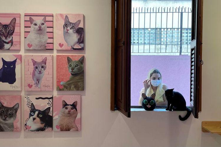 Sebuah kafe kucing bernama Gato Cafe di Rio de Janeiro, Brasil.