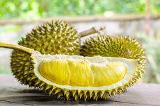Durian Super Tembaga Klamunod dari Bangka Belitung, Punya Peluang Ekspor