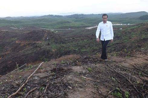 Kebutuhan Lahan Ibu Kota Baru 256.000 Hektar