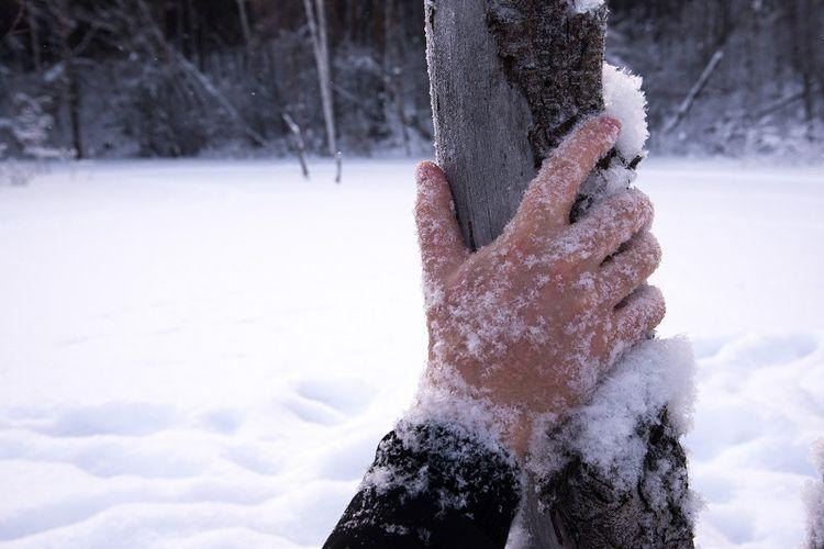 Ilustrasi tewas membeku di tengah musim dingin.