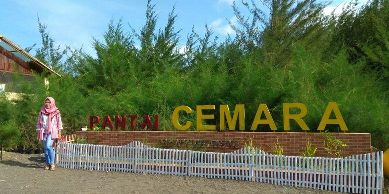 Pantai Cemara salah satu tempat wisata di Banyuwangi yang menjadi tempat konservasi pohon Cemara laut